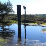 ur, art work by lake